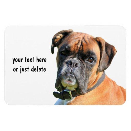 Coutume de portrait de photo de chien de boxeur be magnet en vinyle