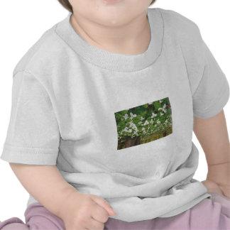 Couture de vêtements de mode : Nature sauvage CANA T-shirt