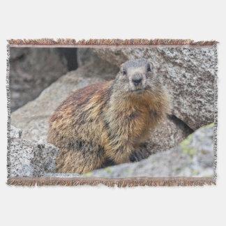 Couverture alpine de jet de Marmot