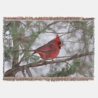 Couverture Cardinal du nord