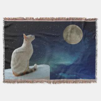 Couverture Chat et lune