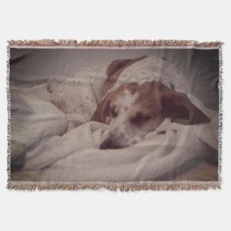 Couverture de beauté de sommeil de chien de chasse