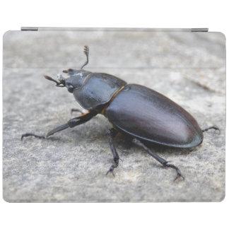 Couverture d'iPad de scarabée de mâle Protection iPad