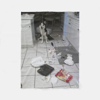 Couverture faite sur commande d'ouatine de chien