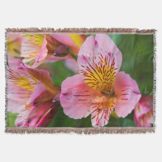 Couverture Jolies fleurs
