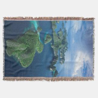 Couverture L'Indonésie, Papouasie occidentale. Antenne de