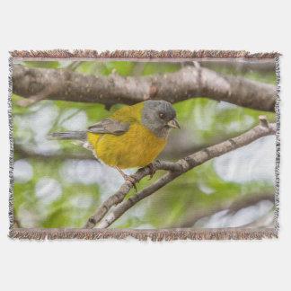 Couverture Oiseau jaune