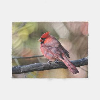 Couverture Polaire Cardinal du nord