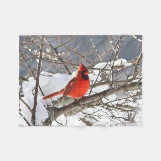 Couverture Polaire Cardinal du nord dans la neige