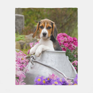 Couverture Polaire Chiot tricolore mignon de chien de beagle dans le