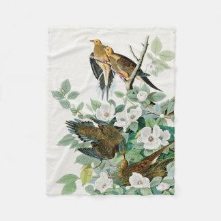 Couverture Polaire Colombe de tortue de la Caroline, oiseaux de