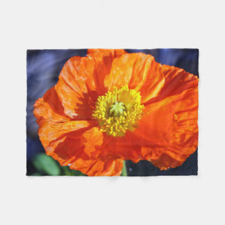 Couverture Polaire Pavot islandais orange