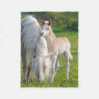 Couverture Polaire Poulain mignon de bébé de chevaux de Haflinger