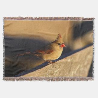 Couvertures Cardinal féminin