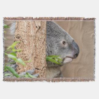 Couvertures Headshot de koala