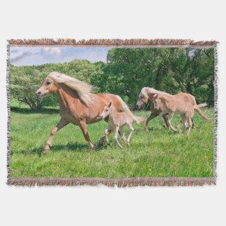 Couvertures Les chevaux de Haflinger avec les poulains mignons