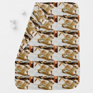 Couvertures Pour Bébé Écureuil moulu de bébé dans la couverture d'Orion