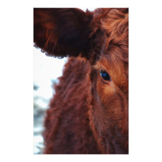 cow-174822 jpg papier à lettre customisable
