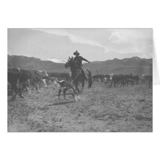 Cowboy roping un veau pour le marquage à chaud de carte de vœux