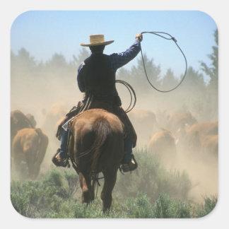 Cowboy sur le cheval avec le lasso conduisant des sticker carré