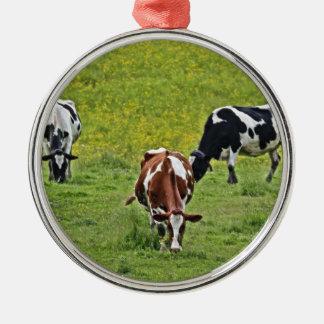 Cows_0068 Ornement Rond Argenté