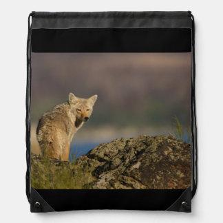 coyote sac avec cordons