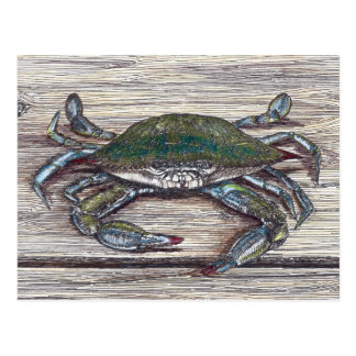 Crabe bleu sur le dock carte postale