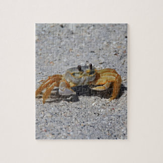 Crabe de fantôme puzzles