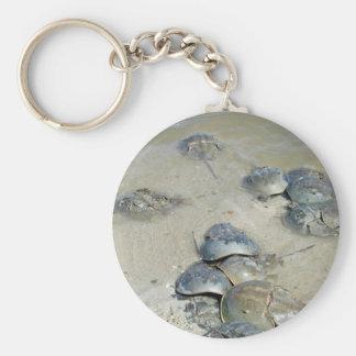 Crabes en fer à cheval dans l'eau porte-clés