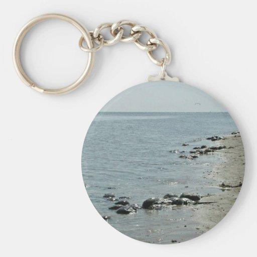Crabes en fer à cheval le long de plage porte-clé