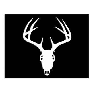 Crâne de chasse de cerfs communs avec des carte postale