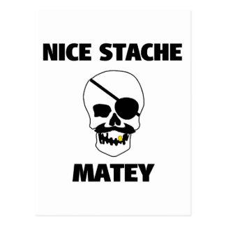 Crâne de copain intéressant de pirate de Stache Cartes Postales