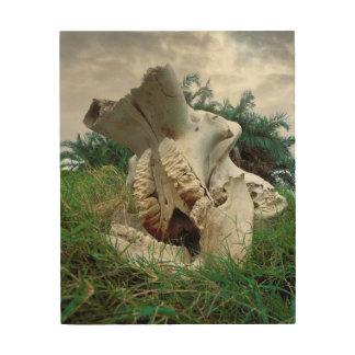 Crâne d'éléphant impression sur bois