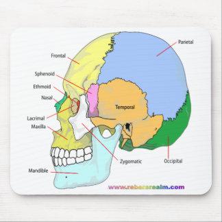 Crâne (latéral) tapis de souris