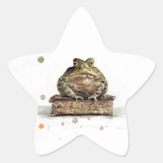 Crapaud d'aquarelle sticker étoile
