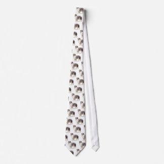 Cravate Berger australien