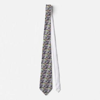 Cravate crique parmi des pierres