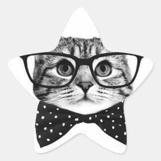 cravate d'arc de chat - chat en verre - chat en sticker étoile