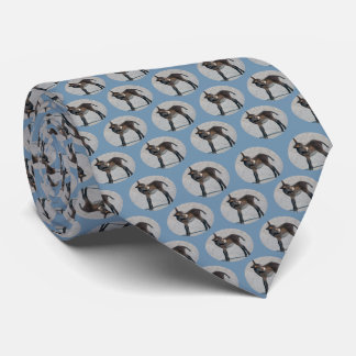 Cravate de frénésie de Burro (bleu de ciel)