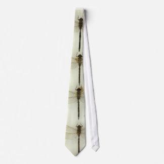 Cravate de libellule