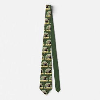 Cravate de POIDS de parc national d'Acadia