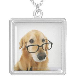 Cravate et verres de port de chien se reposant sur pendentif carré