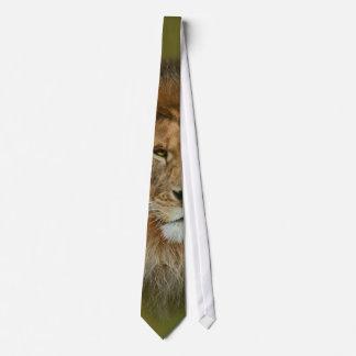 Cravate Fin majestueuse de lion de l'Afrique du Sud