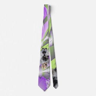 Cravate Keeshonden