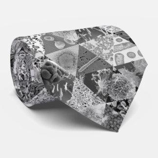 Cravate La Science microscopique de glissière