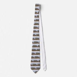 Cravate Le Quiraing
