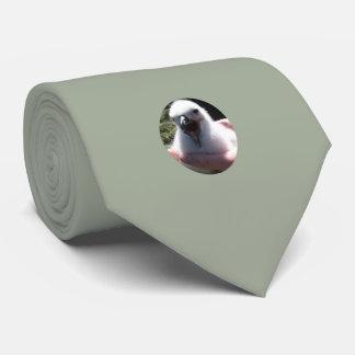 Cravate Nids de poussin d'albatros dans des mains humaines