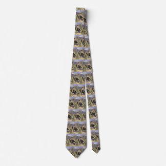 Cravate Ouest sauvage vintage, un trappeur indien par