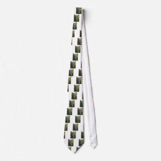 Cravate Tumalo tombe dans la courbure Orégon