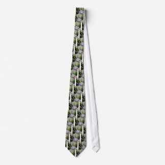 Cravates canyon vert de crique